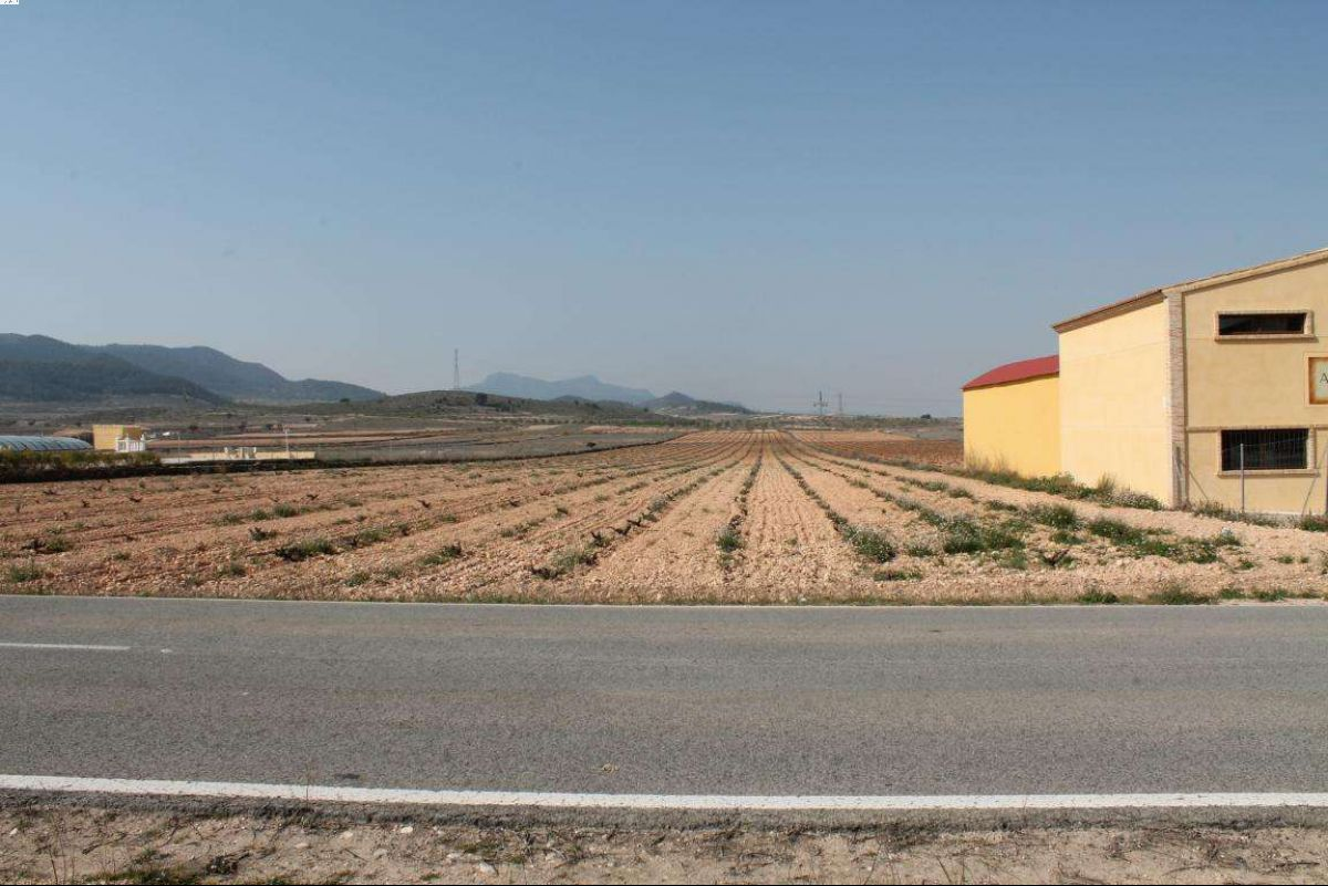 Ref:1025 Land For Sale in Jumilla