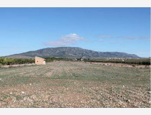 Land in Pinoso, Alicante