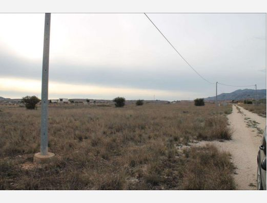 Plot of land in Pinoso, Alicante
