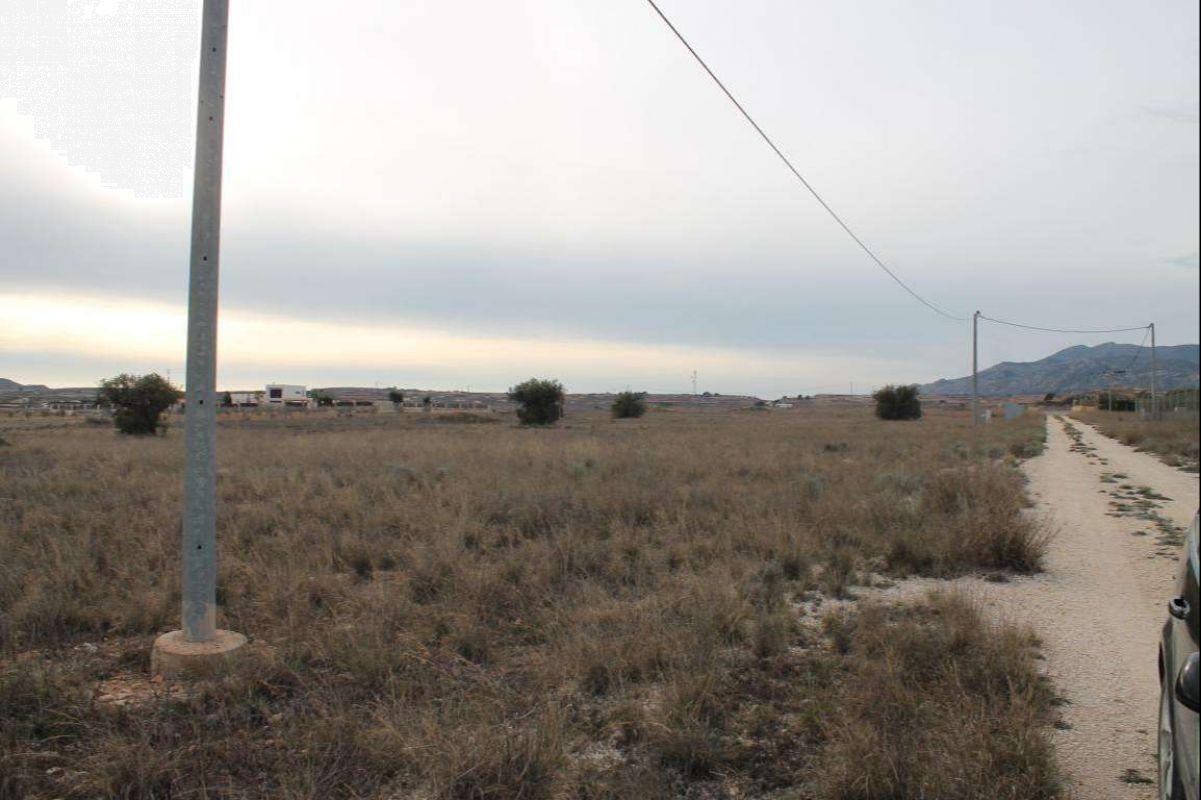 Ref:2097 Land For Sale in Pinós, el/Pinoso