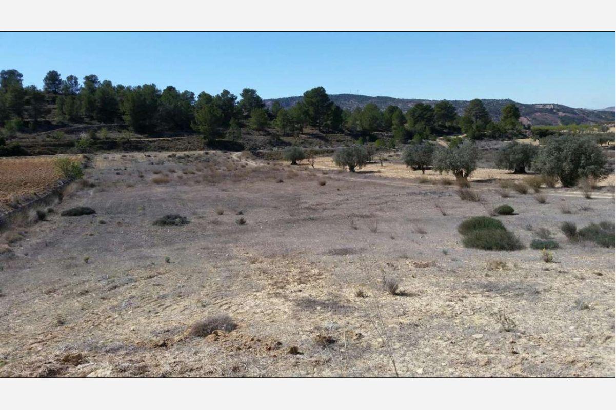 Ref:2185 Land For Sale in Pinós, el/Pinoso