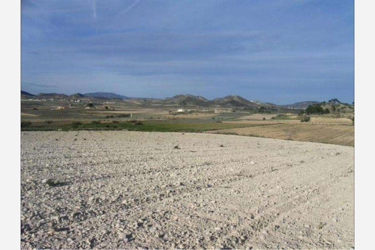 Parcela de tierra en Jumilla, Murcia