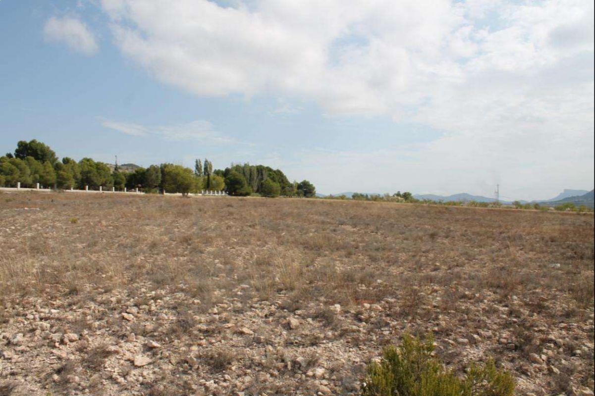 2320: Land in Salinas