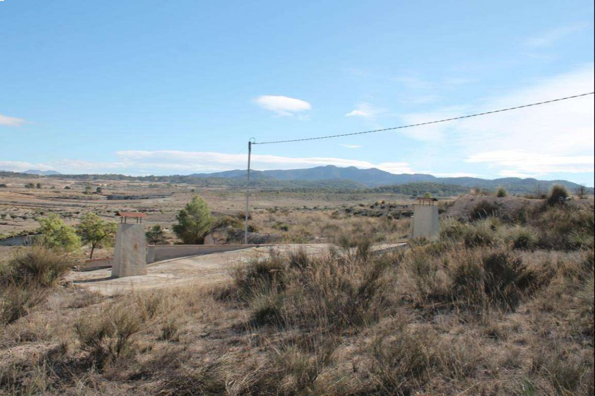2357: Land in Jumilla