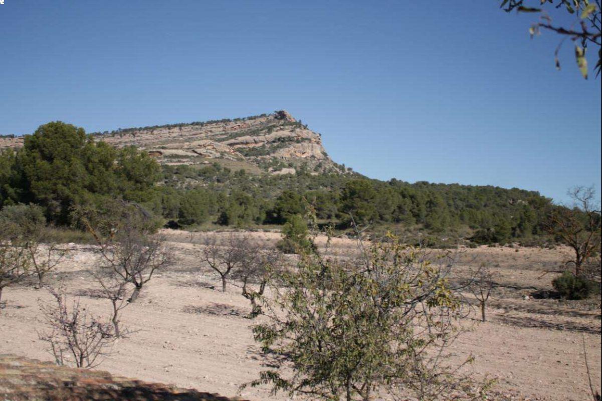 Casa de campo independiente cerca de Yecla, Murcia