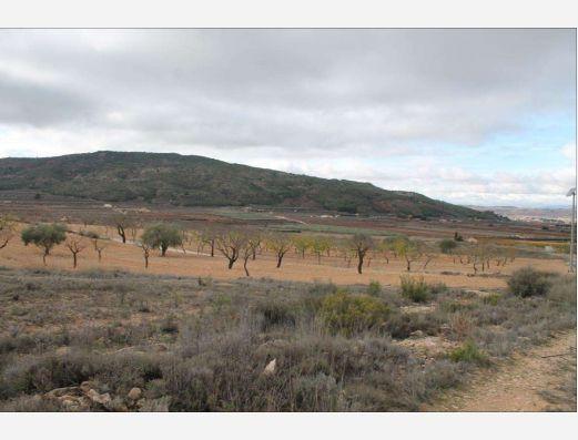 Plot of land near Pinoso, Alicante