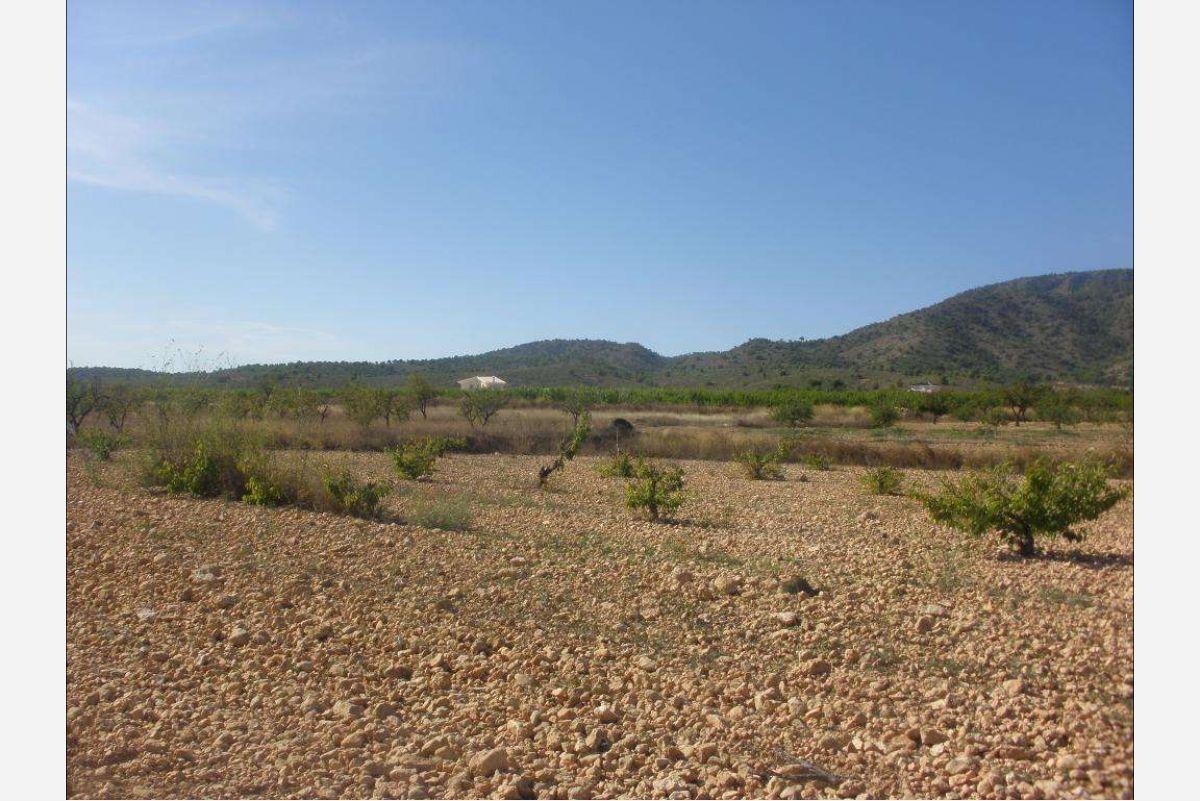 Ref:2525 Land For Sale in Pinós, el/Pinoso